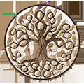The Oak Tree Organisation Australia